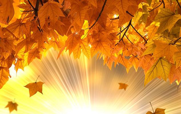 Осенние талисманы