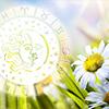Видеогороскоп для всех знаков Зодиака на июль