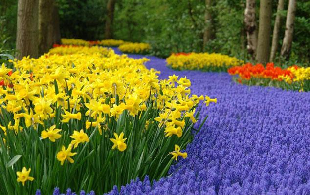 Весна пришла - весне дорогу!