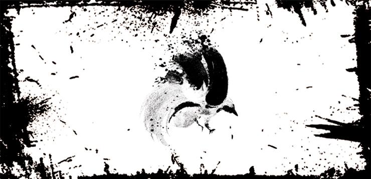 Птица в гадании и во сне