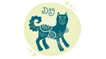 Восточный гороскоп: собака