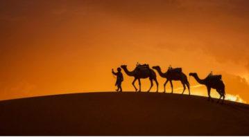 тест куб в пустыне