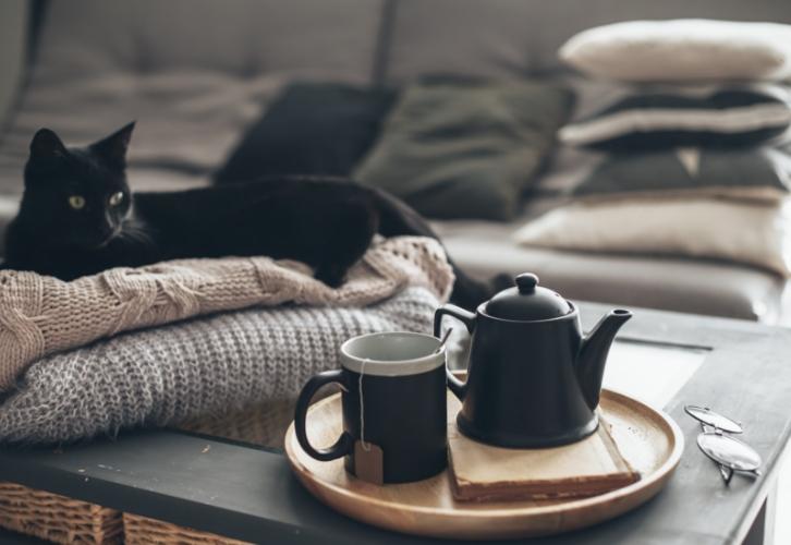 """Тельцов хлебом не корми, а дай что-нибудь эдакое. В роли """"эдакого"""" чаще всего выступают сладости для дам и что-то мясное для Тельцов-мужчин. За этим знаком водится еще один грешок – уж очень Тельцы любят вкусно покушать, сидя на удобном диване перед телевизором"""