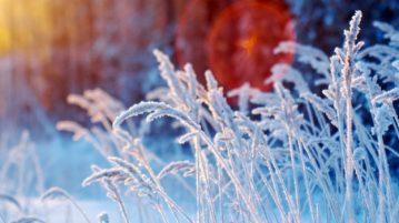 астропрогноз на декабрь