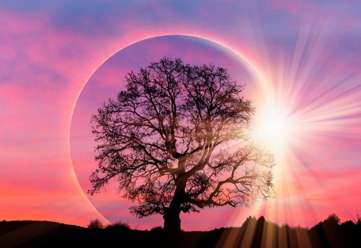 Фазы луны солнечные и лунные затмения