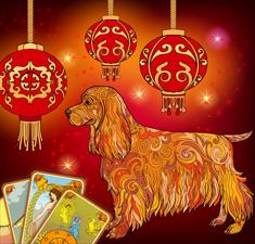 Прогноз Таро: «12 месяцев года Желтой Земляной Собаки»