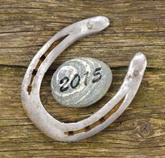 Талисман удачи и защиты на год