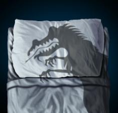 Толкование и корректировка негативного сновидения