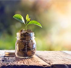 «Материальное благополучие»: просмотр направлений деятельности