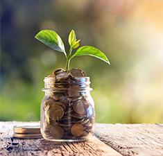 2020 год имое Колесо Фортуны: предсказание финансового движения втечение года